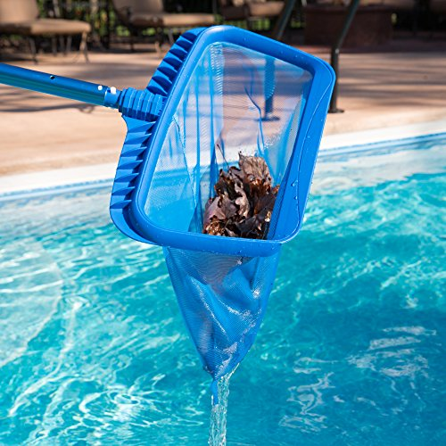 Sharkblu Supplies Heavy Duty Swimming Pool Leaf Rake And