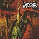 Year of Desolation by YEAR OF DESOLATION (2007)