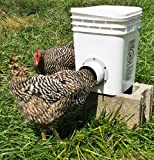 Poultry Bucket Feeder from Aquabarrel Do your birds toss their head around, billing out much of the feed? Do your birds kick dirt into the feeder? Is your feeder on the ground or installed at a height that they are pooping into the feeder? Do you lea...