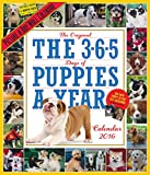 The 365 Puppies-a-Year Picture-a-Day 2016 Calendar
