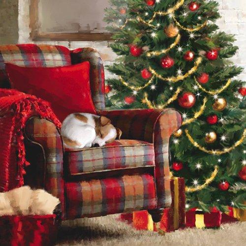 weihnachtskarten-set-brieftasche-von-10-in-2-snoozing-welpen-127-x-127-cm-xmw0029