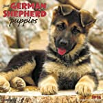Just German Shepherd Puppies 2016 Cal...