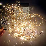 Qualizzi Starry Lights 60 Feet Xx-Long 360 Leds with Remote Control Dimmer. Warm White Twinkling Lights on Copper Wire String Plus E-book. Fading Fairy Effects. White 110 220v Pw Adaptor