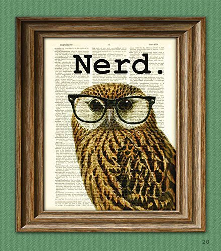 The Nerd Bird Owl in black glasses illustration beautifully upcycled dictionary page book art print
