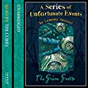 The Grim Grotto: A Series of Unfortunate Events, Book 11 Audiobook by Lemony Snicket Narrated by Tim Curry