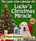The Lucky Little Labrador: Luckys Christmas Miracle -- A Bedtime Story with 15 PUPPY PICTURES! for Ages 6-9 (Little Readers)