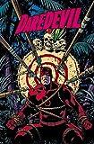 Daredevil Volume 2: West-Case Scenerio