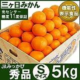 三ヶ日みかん(みっかびみかん)Sサイズ秀品5キロ(60個前後)
