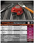 Grillbots Grillbot Robot Grill Cleaner (Red Color) + Meathead Original Temperature magnet guide