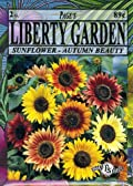 Liberty Garden Sunflower, Autumn Beauty Mix
