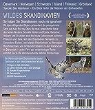 Image de Wildes Skandinavien - Die komplette Serie (2 Discs) [Import allemand]