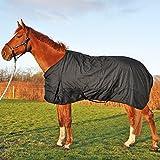 Turnout Weidedecke, Regendecke, Outdoor- Winterdecke für Pferde, 300g, Größe 155 wasserdicht besser als wasserfest oder wasserabweisend!