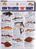 Tightlines - Fishermans Saltwater Fish Chart #2