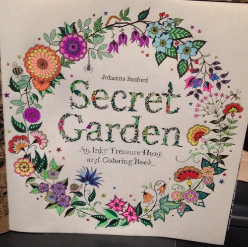 Secret Garden An Inky Treasure Hunt And Coloring Book On