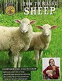 How to Raise Sheep
