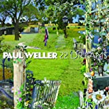 PAUL WELLER - ALL I WANNA DO / PUSH IT ALONG