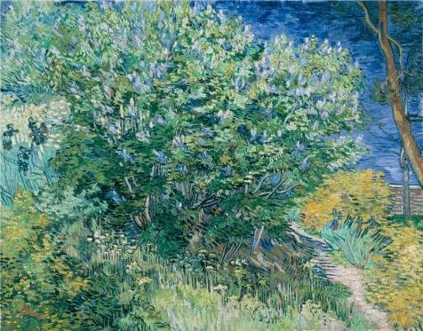 Oil Painting 'Lilac Bush,1889 By Vincent Van Gogh', 18 x 23 inch / 46 x 58 cm , on High Definition HD canvas prints is for Gifts And Bar, Basement And Gym Decoration, quality