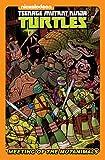 img - for Teenage Mutant Ninja Turtles: The Meeting of the Mutanimals book / textbook / text book