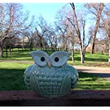 Delightful Ceramic 'Wise Old Owl' Vase or Planter for Indoor or Outdoors