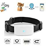 Gps Pet Tracker Anti-lost GPS Locating Pet Tracker, Activity Monitor Tracking in Real Time Free App, Smart Collar For Dog Cat Gps Location Tracker Support Android Ios TK911 (Color: white, Tamaño: mini)