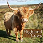 Highland Cows (Wall Calendar 2015 300...