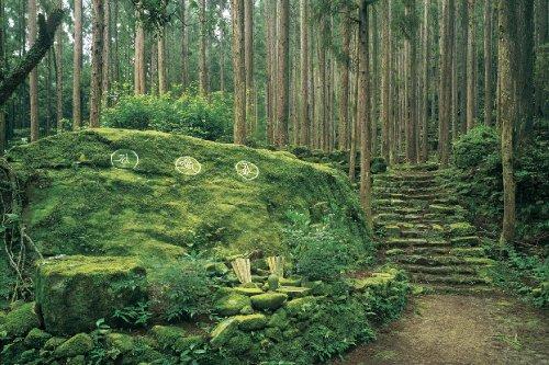 めざせ!パズルの達人 1000ピース 紀伊山地の霊場と参詣道 熊野古道[日本] 11-356