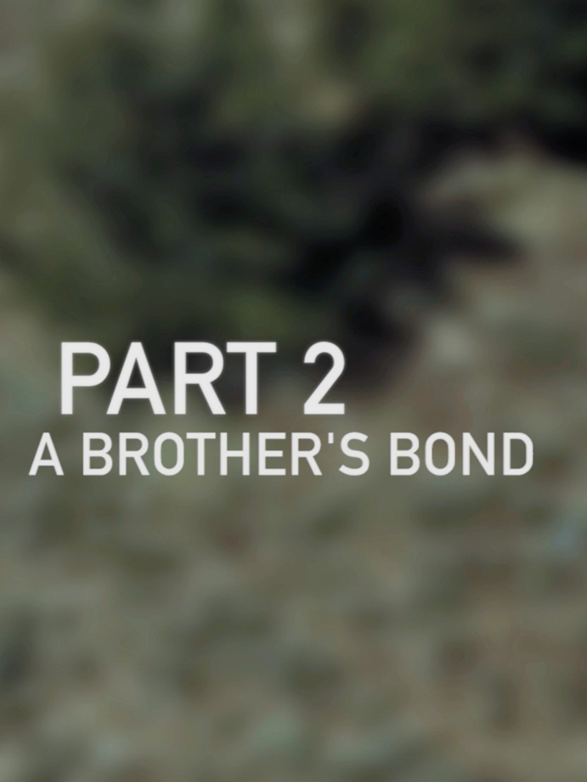 A Brother's Bond: Part 2