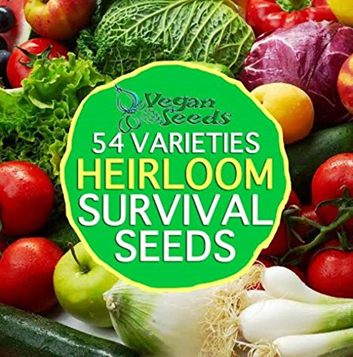 54 Variety 34,000 Organic Non Gmo Seeds