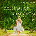 Destination Unknown Audiobook by Amy Clipston Narrated by Aimee Lilly