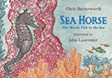 img - for Sea Horse: The Shyest Fish in the Sea book / textbook / text book