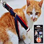 FAIRWIN Jeans Cloth Step-in Dog Leash...
