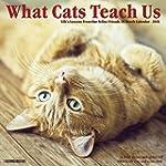 2016 What Cats Teach Us Wall Calendar