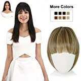 REECHO Fashion One Piece Clip in Hair Bangs/Fringe/Hair Extensions (Color: F10/22, Tamaño: Full Length Bangs)