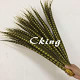 Maslin 100pcs Yellow Dyed Natural Ringneck Lady Amherst Pheasant Tails Pheasant Feather 50-100cm 20-40inch Real Long Chicken Tails - (Color: 90 to 100pc 100pc) (Color: 90 to 100pc 100pc)