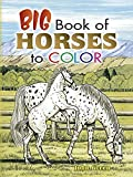 Big Book of Horses to Color (Dover Nature Coloring Book) (048645178X) by Green, John