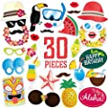 Hawaiian Photo Booth Props - Luau Party Supplies for the Summer Pool Party