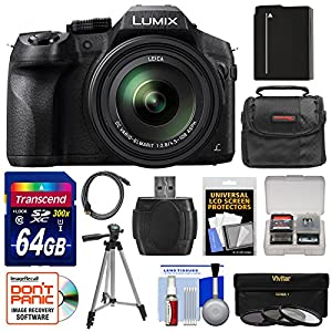 Panasonic Lumix DMC-FZ300 4K Wi-Fi Digital Camera with 64GB Card + Battery + Case + Tripod + 3 Filters + Kit