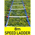 8m Speed Ladder & Carry Bag [Net World Sports]