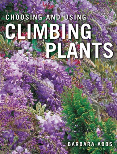 Climbing plants with flowers climbing plants albertsons for Evergreen climbing plants for privacy