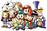 Harvest Moon: A wonderful Life Player's Choice (GameCube)
