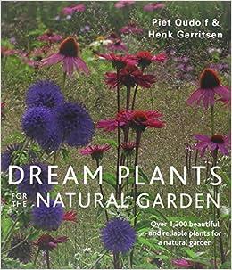 Dream plants for the natural garden piet oudolf henk for Piet oudolf plant list