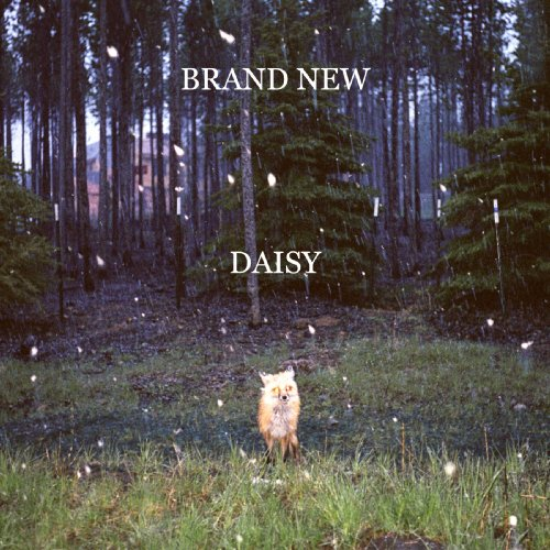 Brand New by Brand New