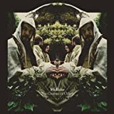 Courage of Others by Midlake (2010-02-02)