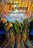 img - for Drinking Lightning: Art, Creativity, and Transformation book / textbook / text book