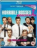 Horrible Bosses 2 [Extended Cut] [Blu-ray] [2015]