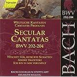 Edition Bachakademie Vol. 62 (Weltliche Kantaten BWV 202-204)