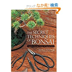 �p���� �~�́E�閧�̃e�N�j�b�N - The Secret Techniques of Bonsai
