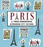 Paris: A Three-Dimensional Expanding City Skyline (City Skylines)