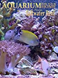 Aquarium for your Home - Saltwater Reef an Aquarium for your Television