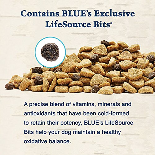 Blue Buffalo Wilderness Grain Free Dry Dog Food, Salmon Recipe, 24-Pound Bag_Image1